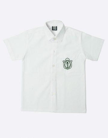 Delhi public school boys shirt