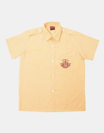 Pen school boys shirt