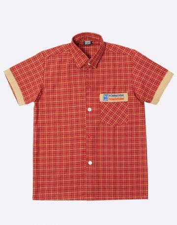 Chaitanya techno school shirt