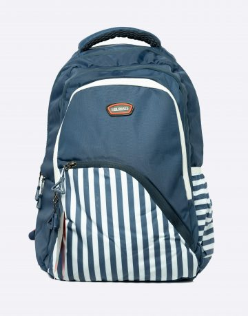 Blue Unisex School Bag